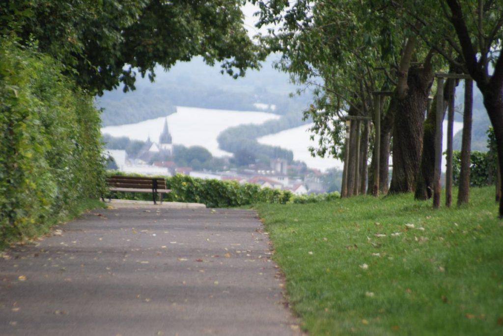 Rheingau Goetheblick