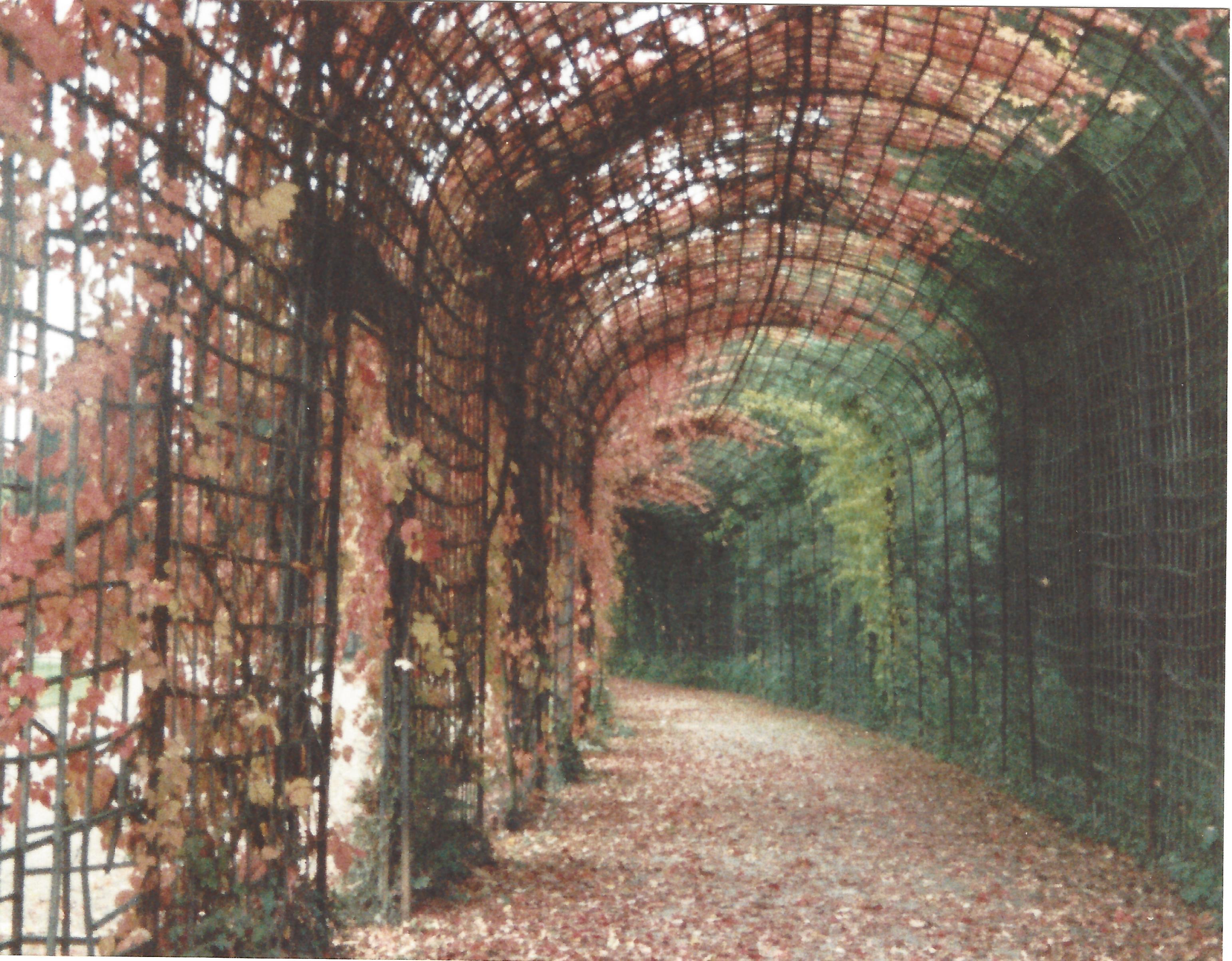 Schwetzingen Schloss Laubengang
