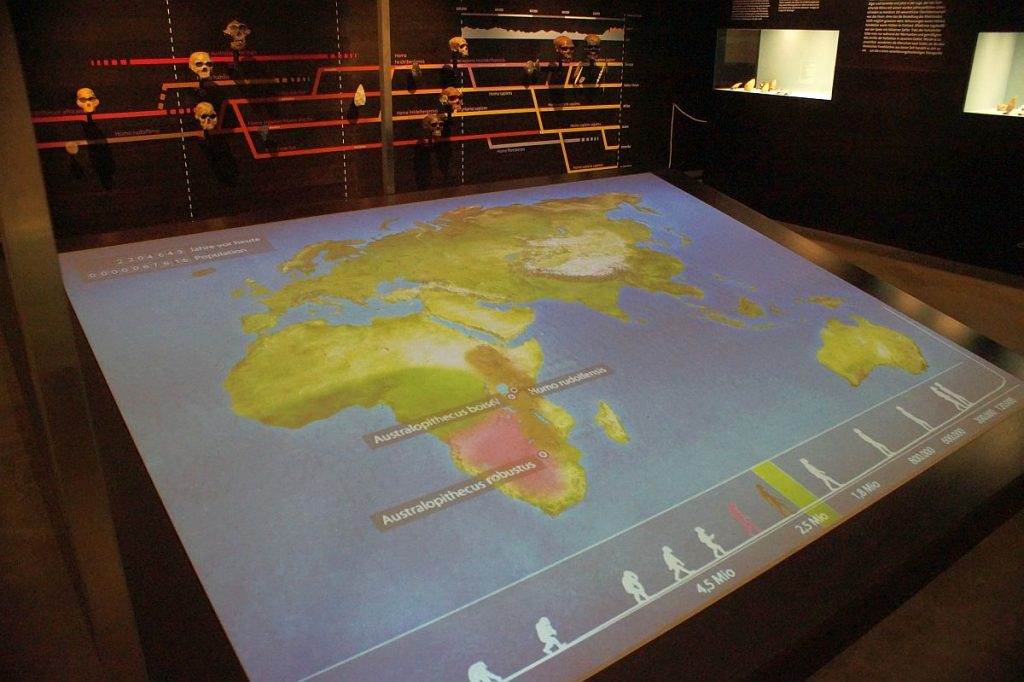 LVR Landesmuseum Bonn - Entwicklung des Menschen multimedial